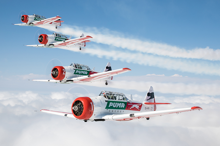 Flying formation – a five-foot world