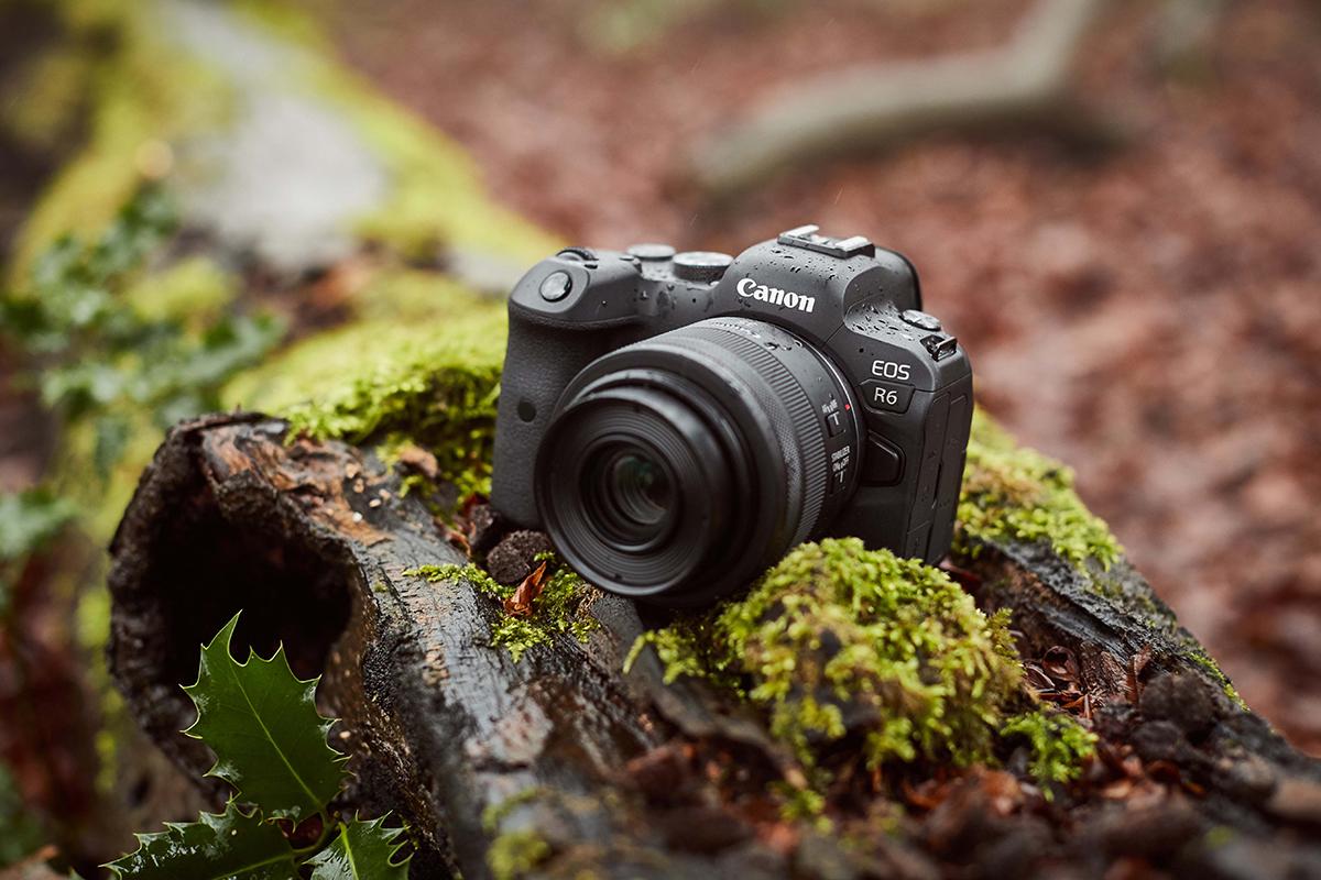 The Canon EOS R6: True Speed. True Mirrorless